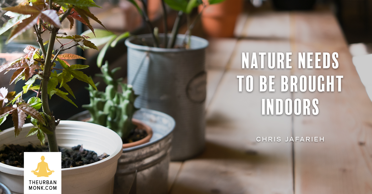 Nature Needs To Be Brought Indoors -Chris Jafarieh (@BlaqkDG) via @Well_Org