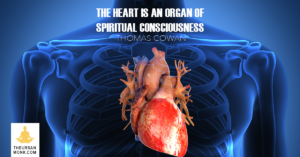 Getting To Know The Human Heart