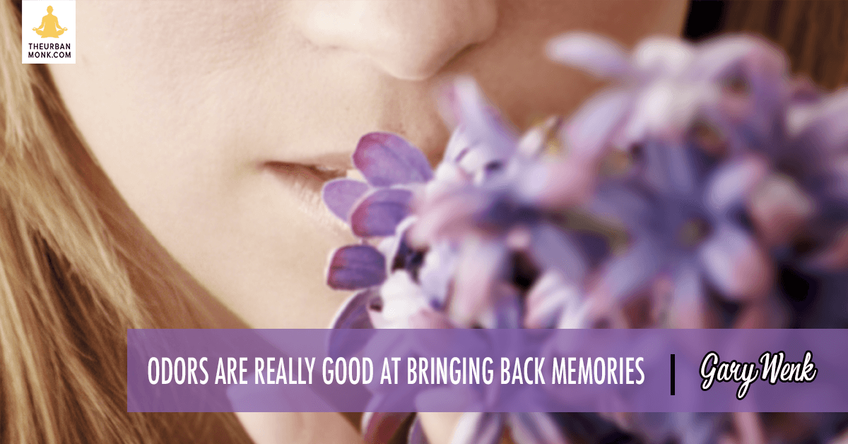 Odors Are Really Good At Bringing Back Memories - #GaryWenk via @PedramShojai
