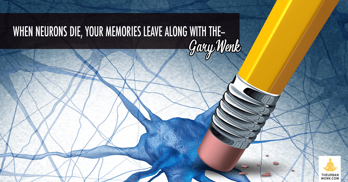 When You Neurons Die, Your Memories Leave Along With Them - #GaryWenk via @PedramShojai