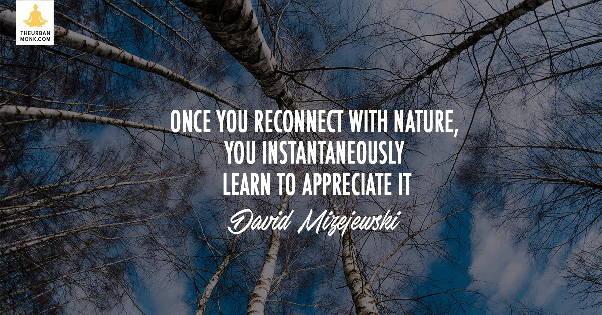 Once You Reconnect With Nature, You Learn To Appreciate It - @Dmizejewski via @PedramShojai