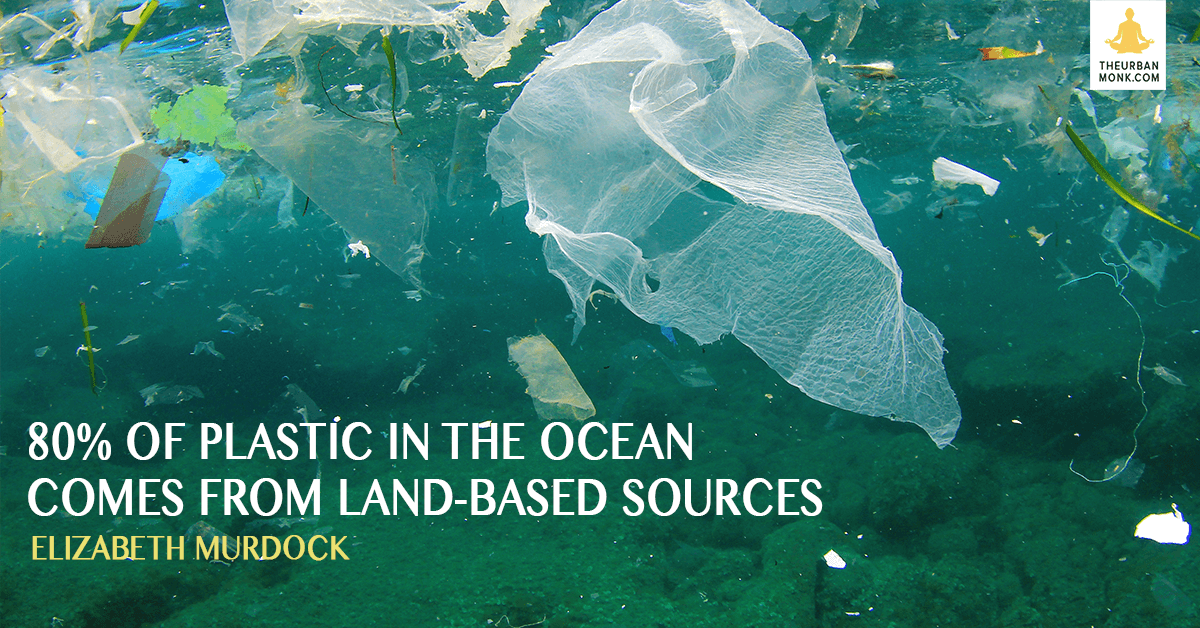 80% of Plastic In The Ocean Comes From Land-Based Sources - @emurdockNRDC via @PedramShojai