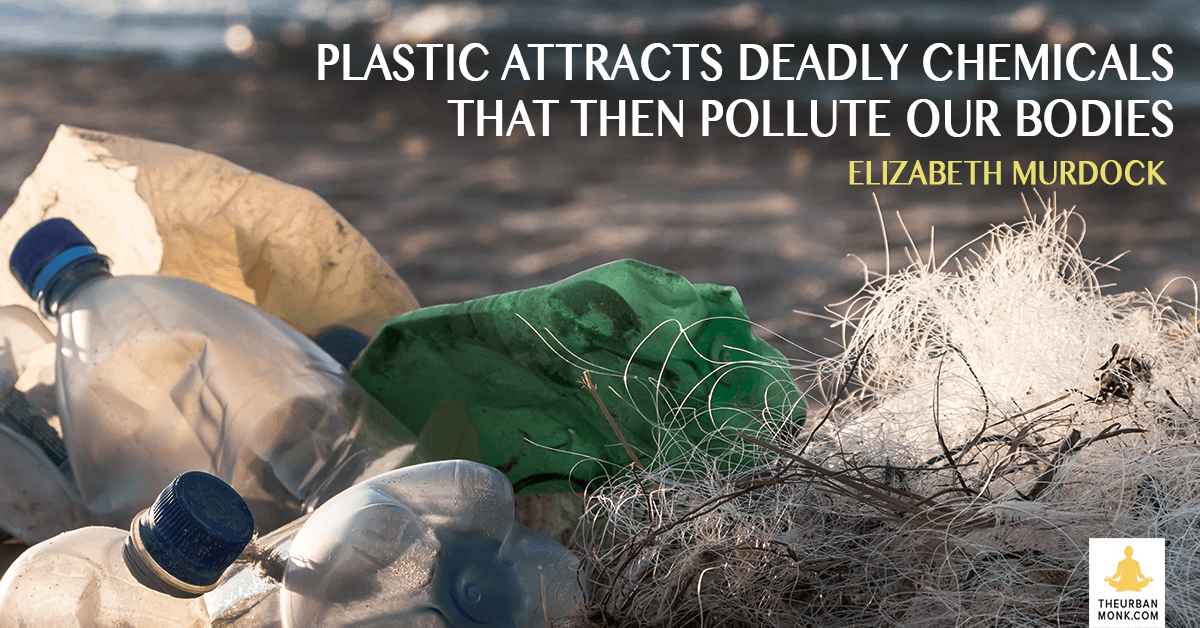 Plastic Attracts Deadly Chemicals That Then Pollute Our Bodies - @emurdockNRDC via @PedramShojai