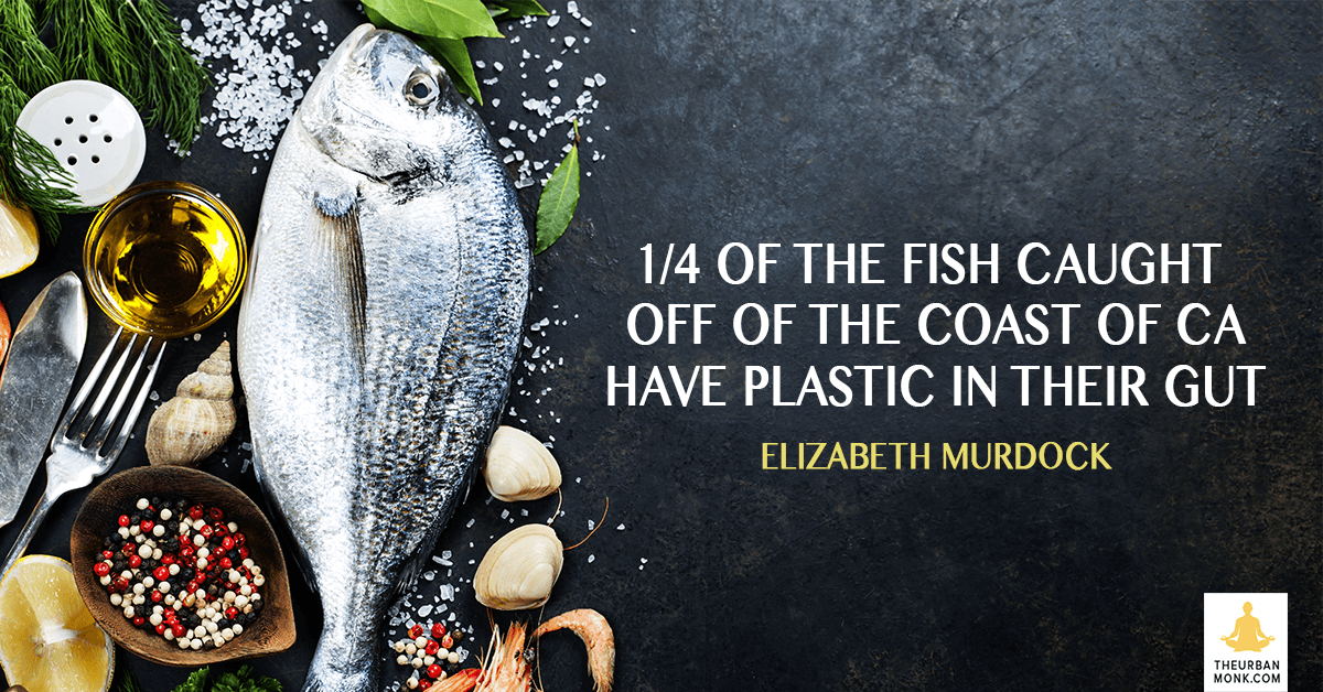 1/4 of the Fish Caught Off Of The Coast Of CA Have Plastic in Their Gut - @emurdockNRDC via @PedramShojai