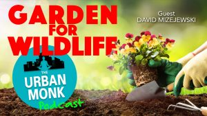 Garden For Wildlife With Guest David Mizejewski