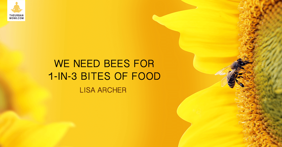 We Need Bees Fo 1-in-3 Bites Of Food  - Lisa Archer @foe_us via @Pedramshojai
