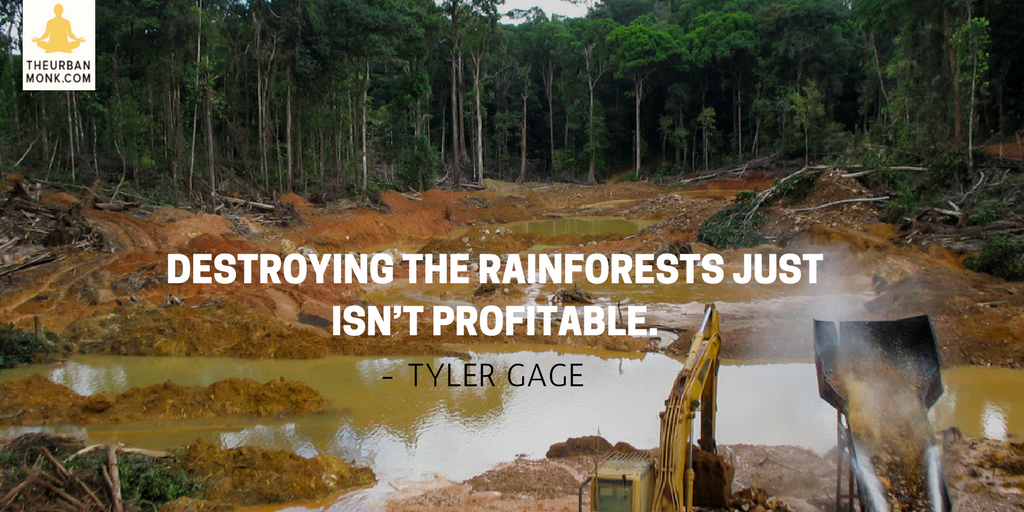 Destroying The Rainforest Just Isn't Profitable - Tyler Gage (@drinkRUNA) via @PedramShojai